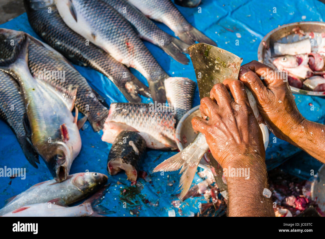 A man is preparing and selling fish on a busy vegetable market street in the suburb New Market - Stock Image