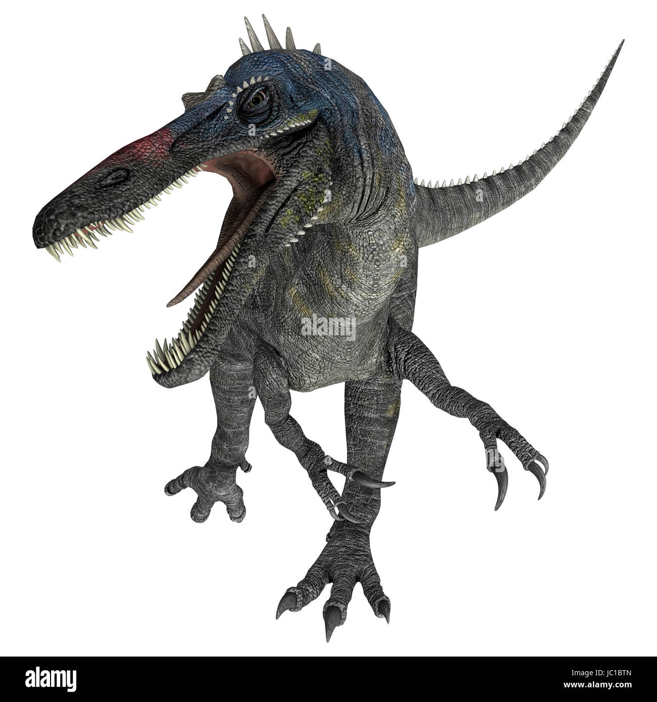 3D digital render of a suchomimus tenerensis isolated on white background Stock Photo