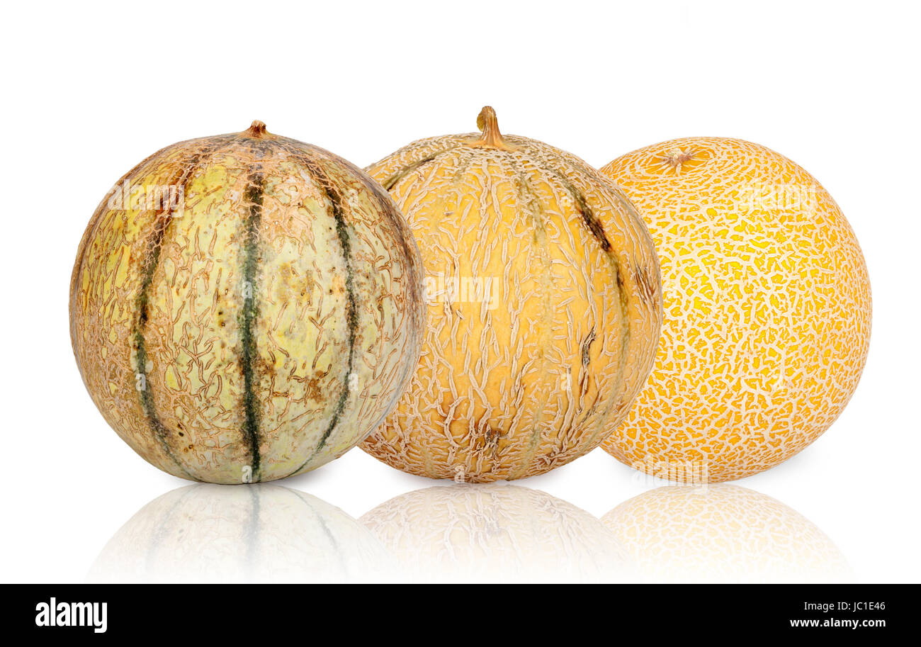 Drei verschiedene Galiamelonen isoliert und gespiegelt vor weißem Hintergrund Stock Photo