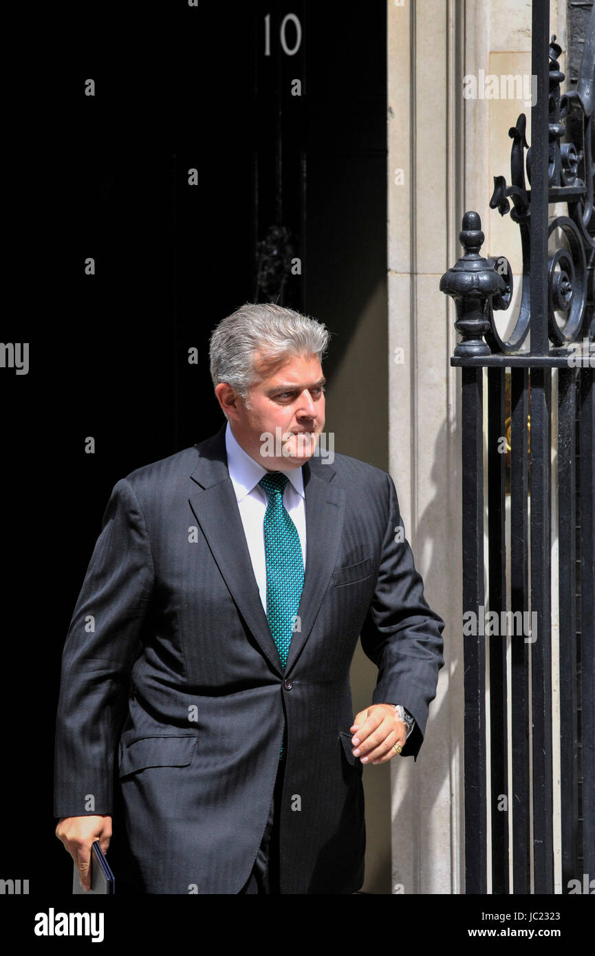 London, UK. 13th June, 2017. Brandon Lewis MP, Minister of State for Immigration, leaves number 10 Downing Street - Stock Image