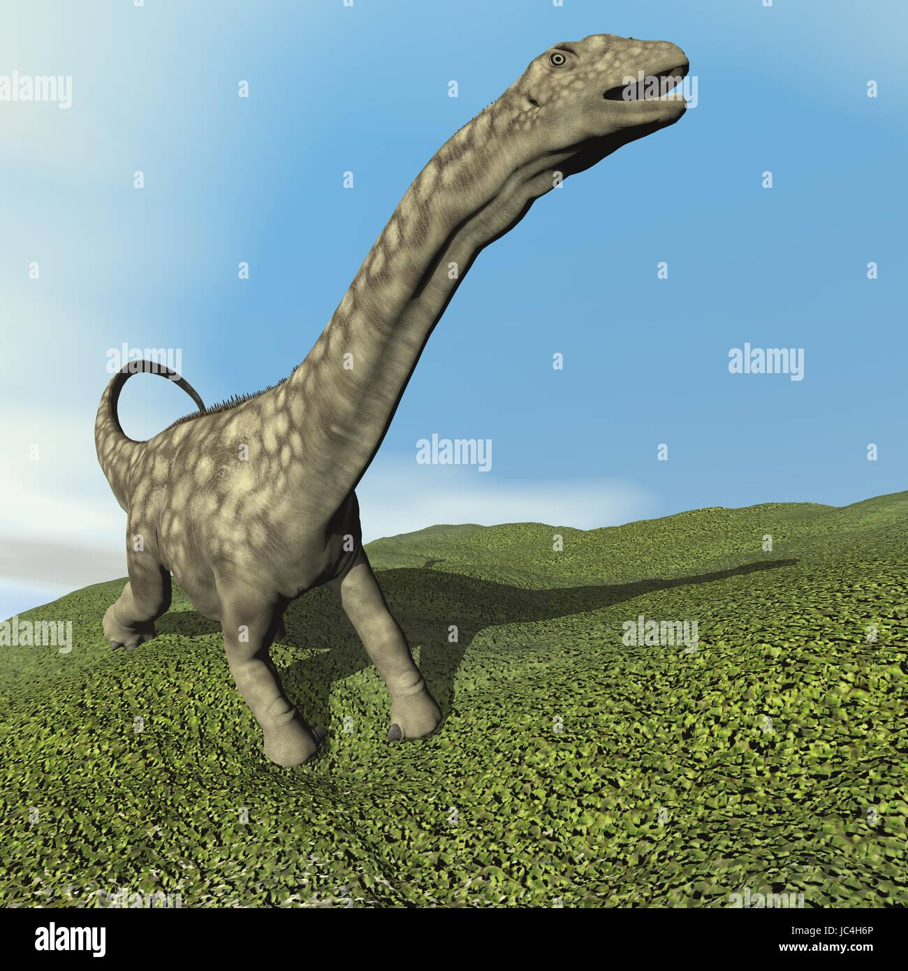 Argentinosaurus dinosaur walking on the grass by day - 3D render Stock Photo