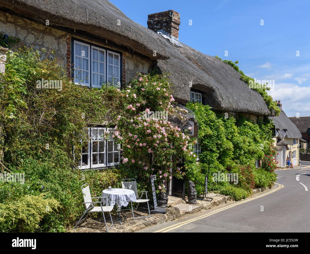 Thatched Tea room, Godshill, Isle of Wight, UK Stock Photo