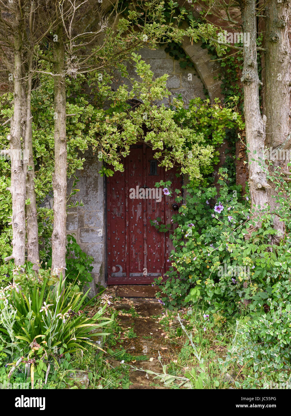 Mysterious arched door with Overgrown plants, Isle of Wight, UK Stock Photo