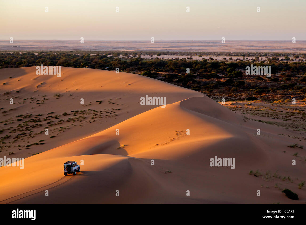 An offroad vehicle drives along a sand dune in the light of the setting sun - Stock Image