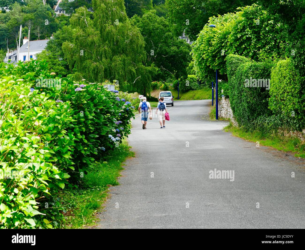 Fit-looking, middle-aged man and woman with backpacks walking down lane next to the river with blooming hydrangeas - Stock Image