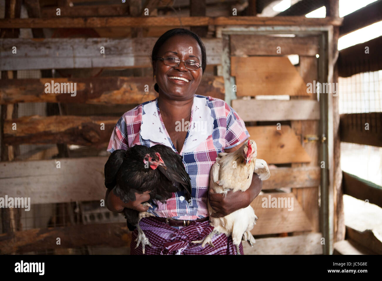 A female small business poultry farmer in Tanzania, Africa. - Stock Image