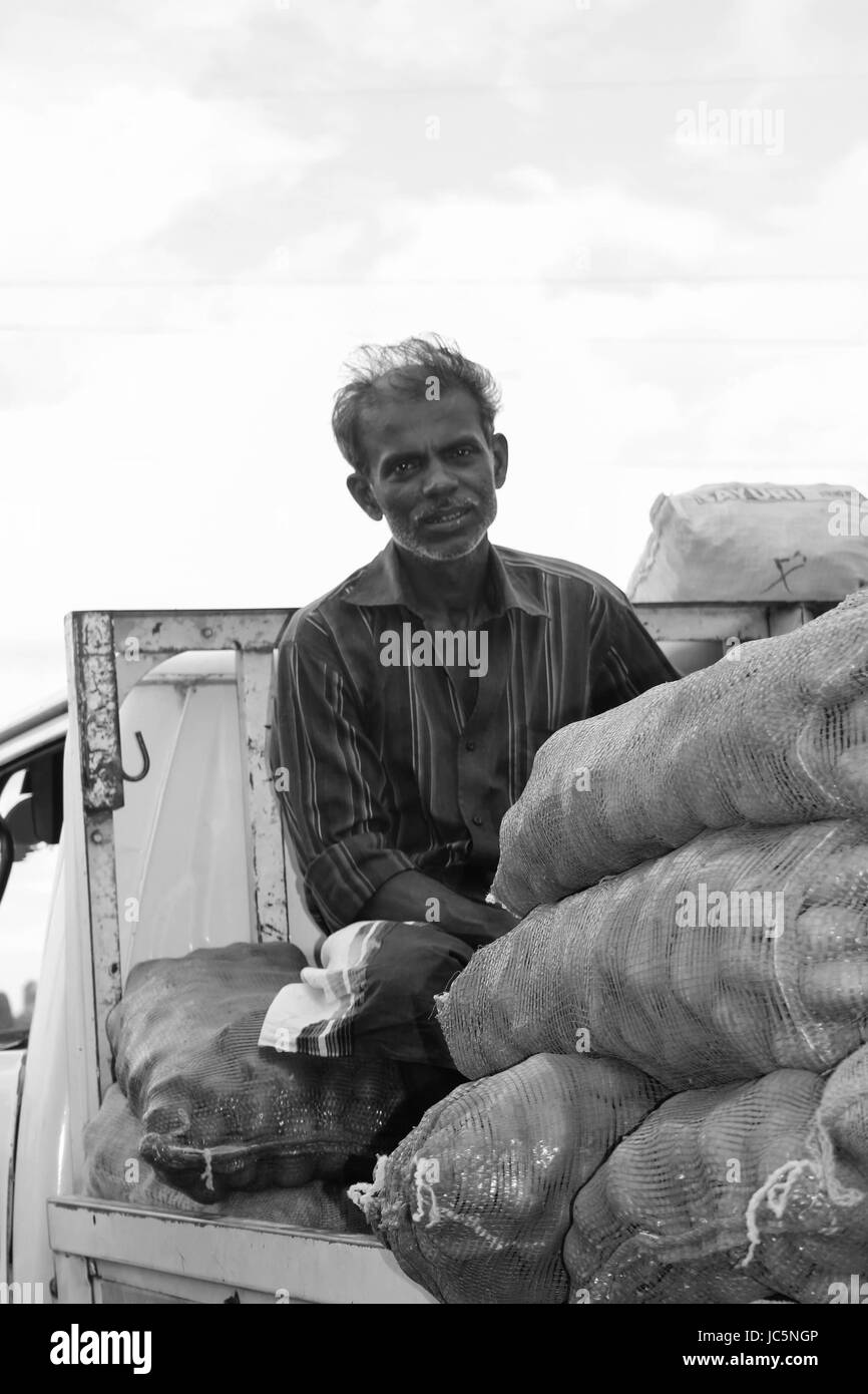 Local village men bringing home grown fruit & vegetables to the market to sell. - Stock Image