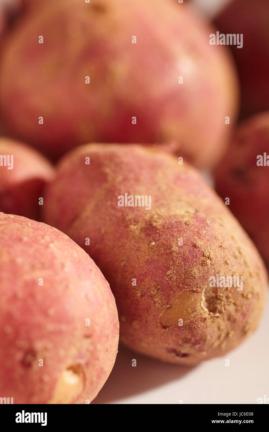 fresh, raw, baby potatoes - Stock Image
