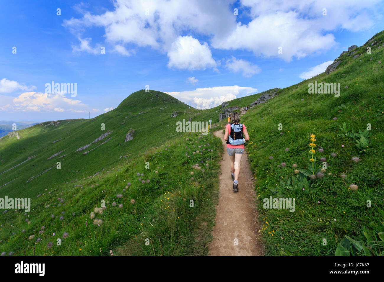 France, Cantal (15), le Plomb du Cantal, sentier vers le sommet devant // France, Cantal, Plomb du Cantal, trail to the summit to Stock Photo