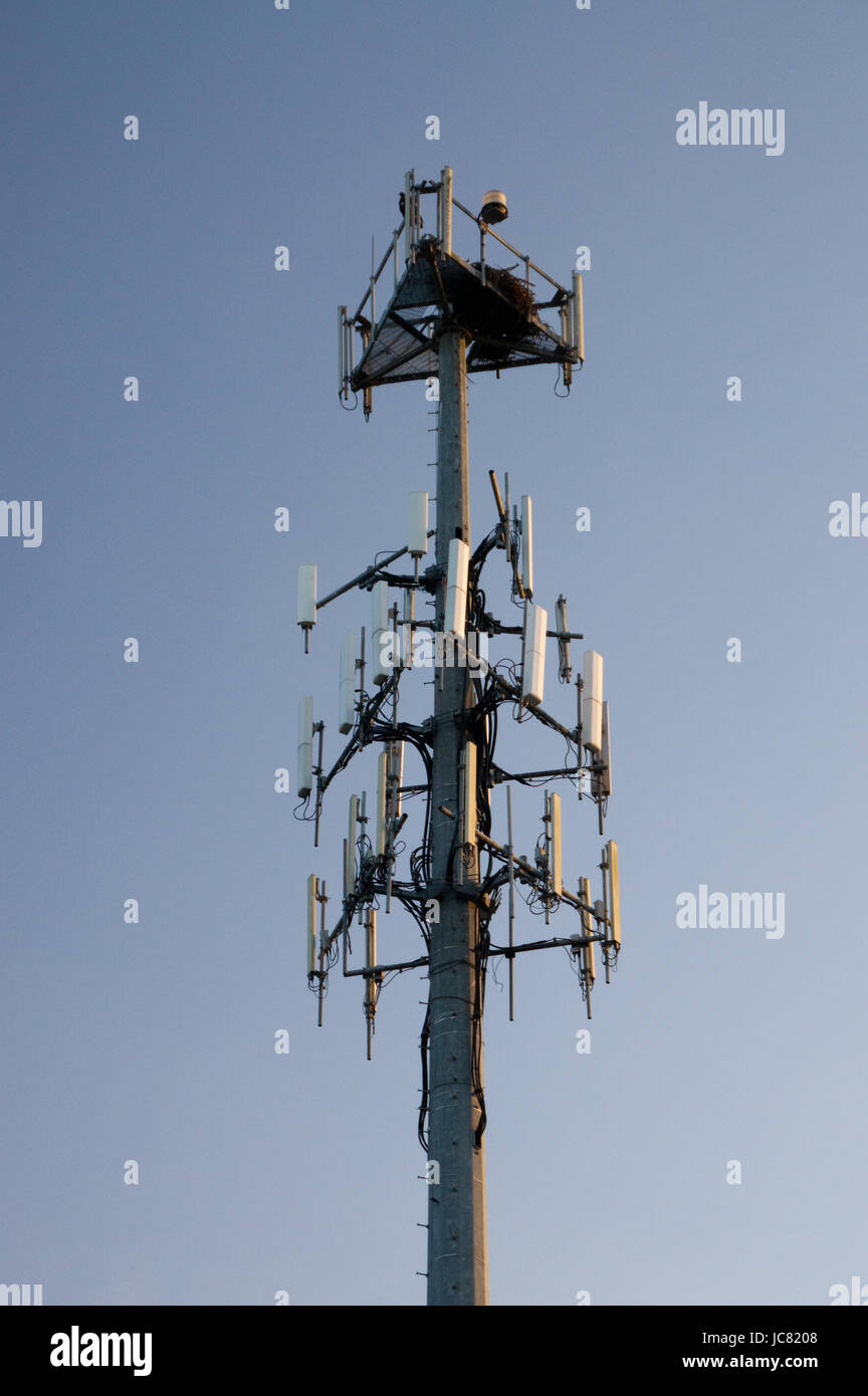 sendemast for mobile with many antennas - Stock Image
