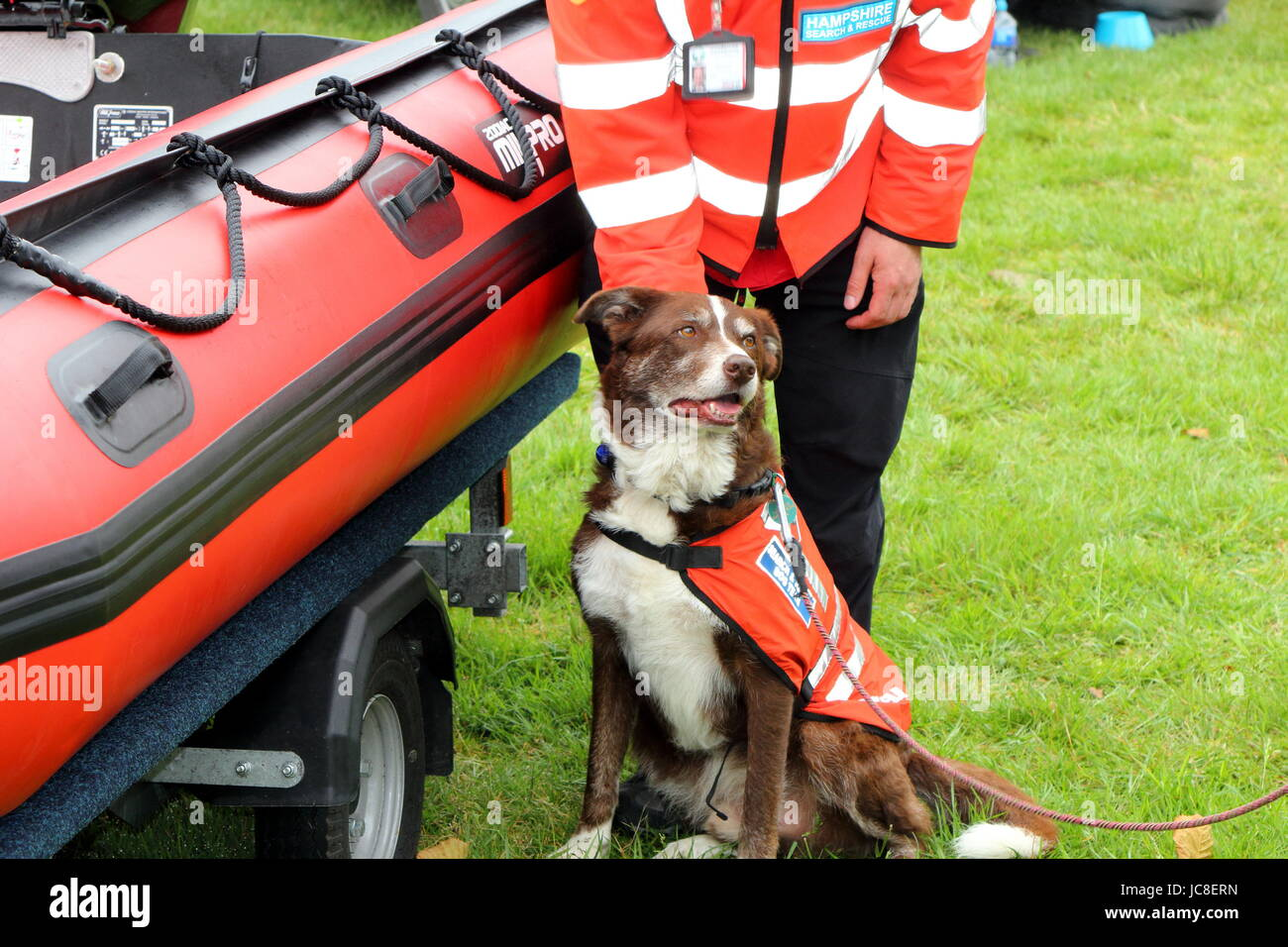 Beaulieu, Hampshire, UK - May 29 2017: Dog and its handler belonging to the Hampshire Search and Rescue team - Stock Image