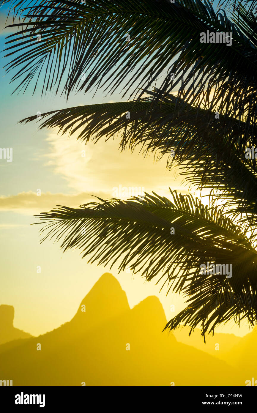 Golden sunset lights up the silhouette of palm fronds against the iconic outline of Two Brothers Mountain in Ipanema - Stock Image