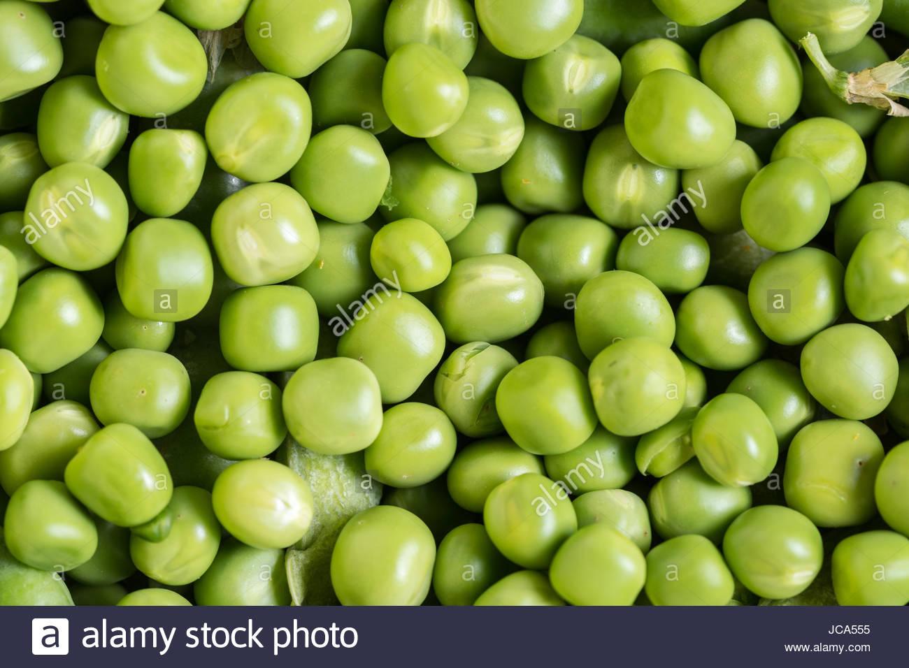 Flat lay pile of fresh green peas closeup macro. - Stock Image