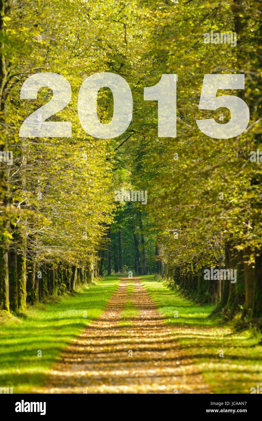 Vorsätze für 2015 auf dem Weg einer Baumallee zum Ziel Stock Photo