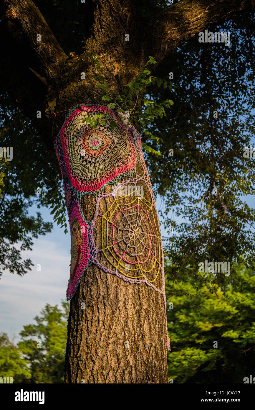 A fake. human made spider's web on a thick trunk of a tree - Stock Image
