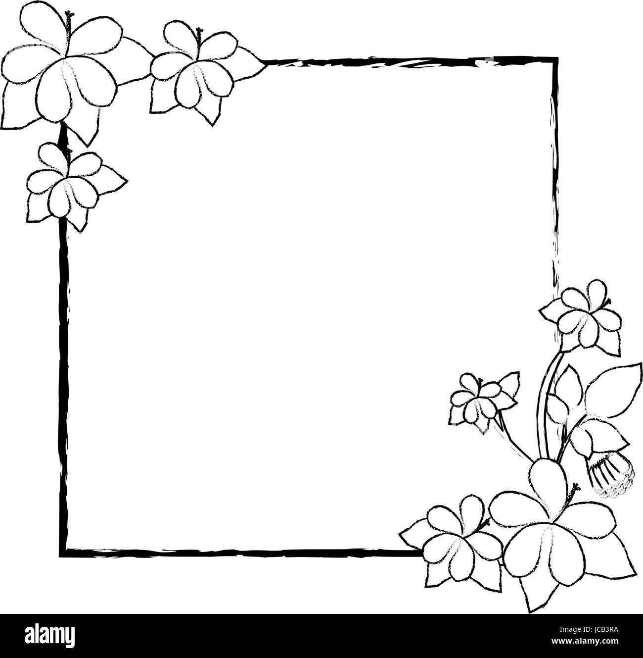 Flower Frame Black White Square Black And White Stock Photos