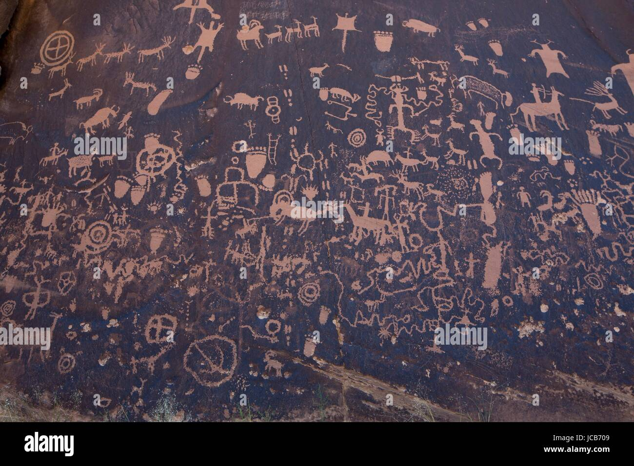 Anasazi Indian petroglyphs line walls at Newspaper Rock State Historical Monument at Canyonlands National Park near - Stock Image
