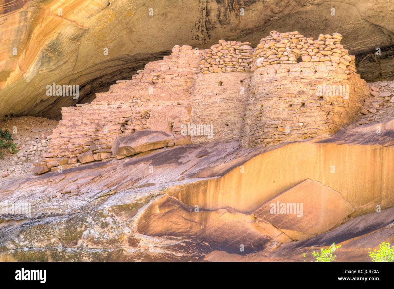 The Anasazi Indian Monarch cliff dwelling ruins in the South Fork of Mule Canyon at Cedar Mesa in Bears Ears National - Stock Image