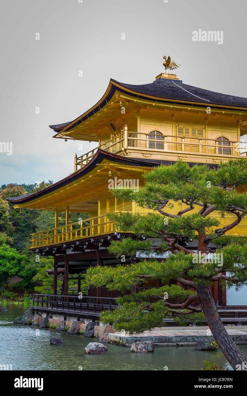 Golden Temple, Kinkaku-ji is a Zen buddhist temple, Kyoto, Japan. - Stock Image