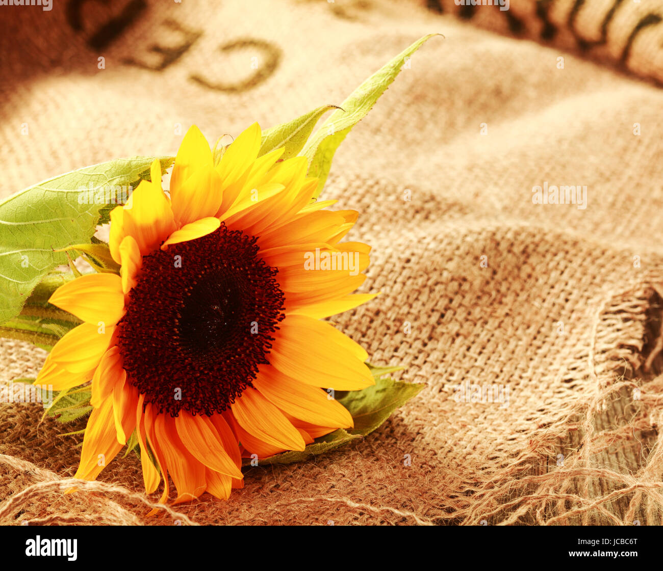 Country Background High Resolution Stock Photography And Images Alamy