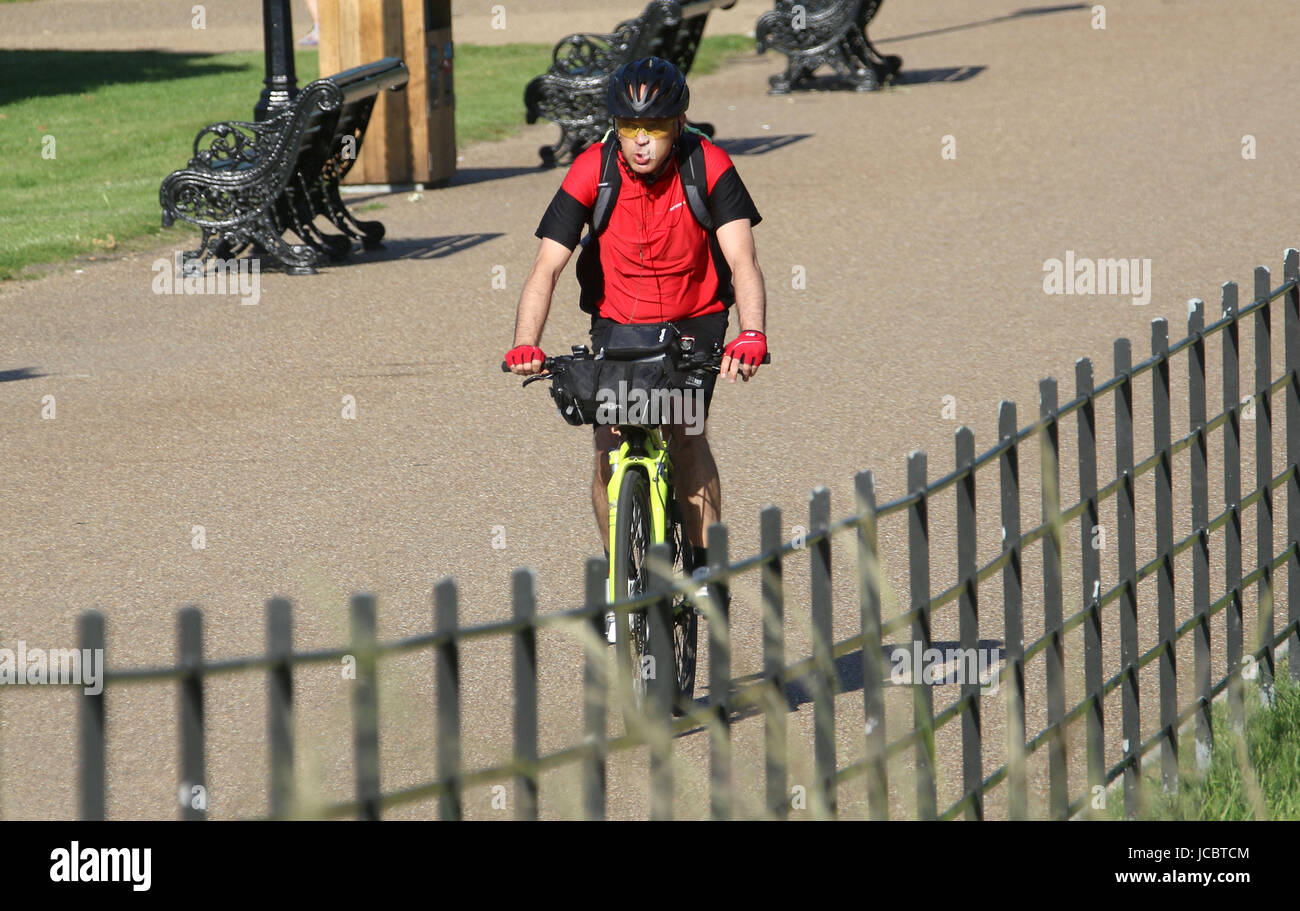Jun14, 2017 - A cyclist rides in the sun through Kensington Gardens, in the Royal Borough of Kensington and Chelsea Stock Photo