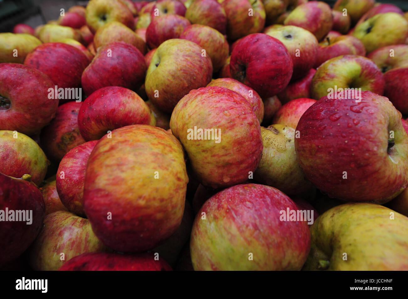 apfel,äpfel,obst,frucht,früchte,pflanzen Stock Photo