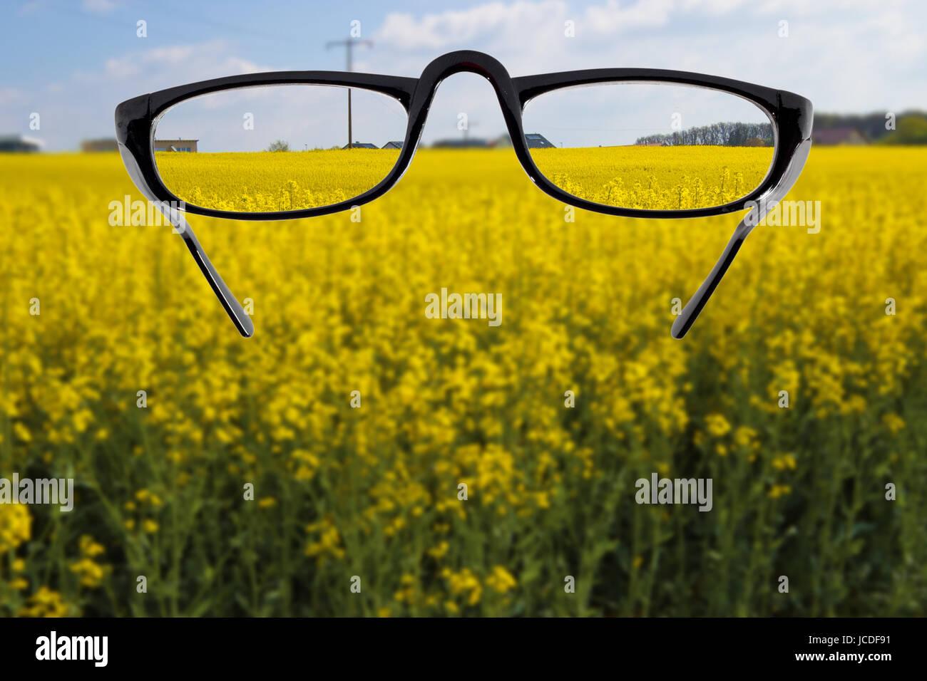 Brille vor unscharfem Landschaftshintergrund Stock Photo