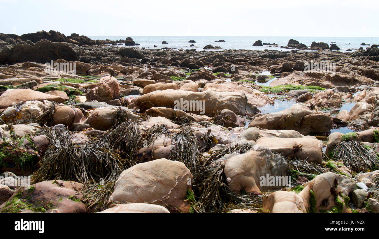 Beach-side rocks, reef and rock pools - Stock Image