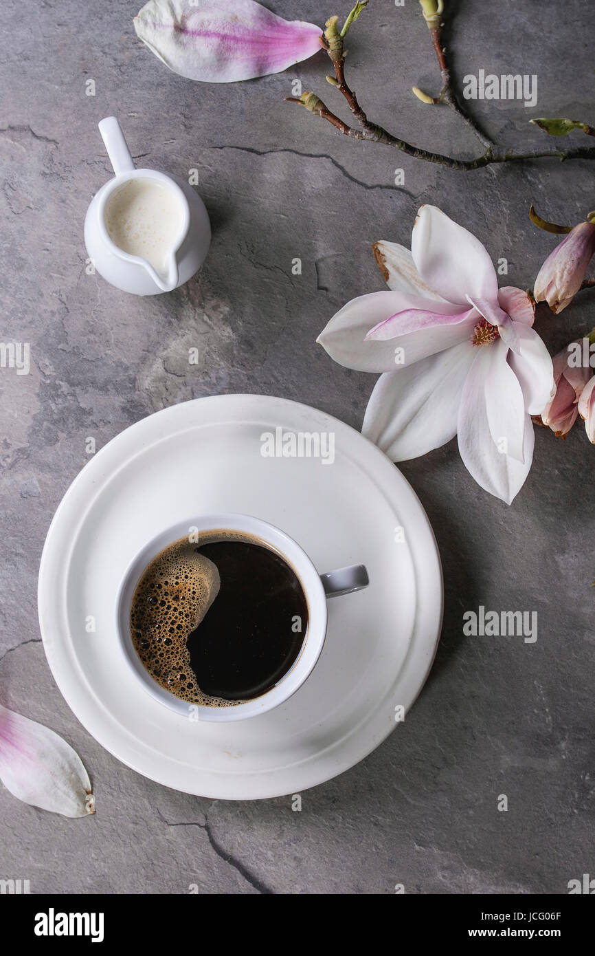 White cup of black coffee, served on white saucer with jug of cream and magnolia flower blossom branch over gray - Stock Image