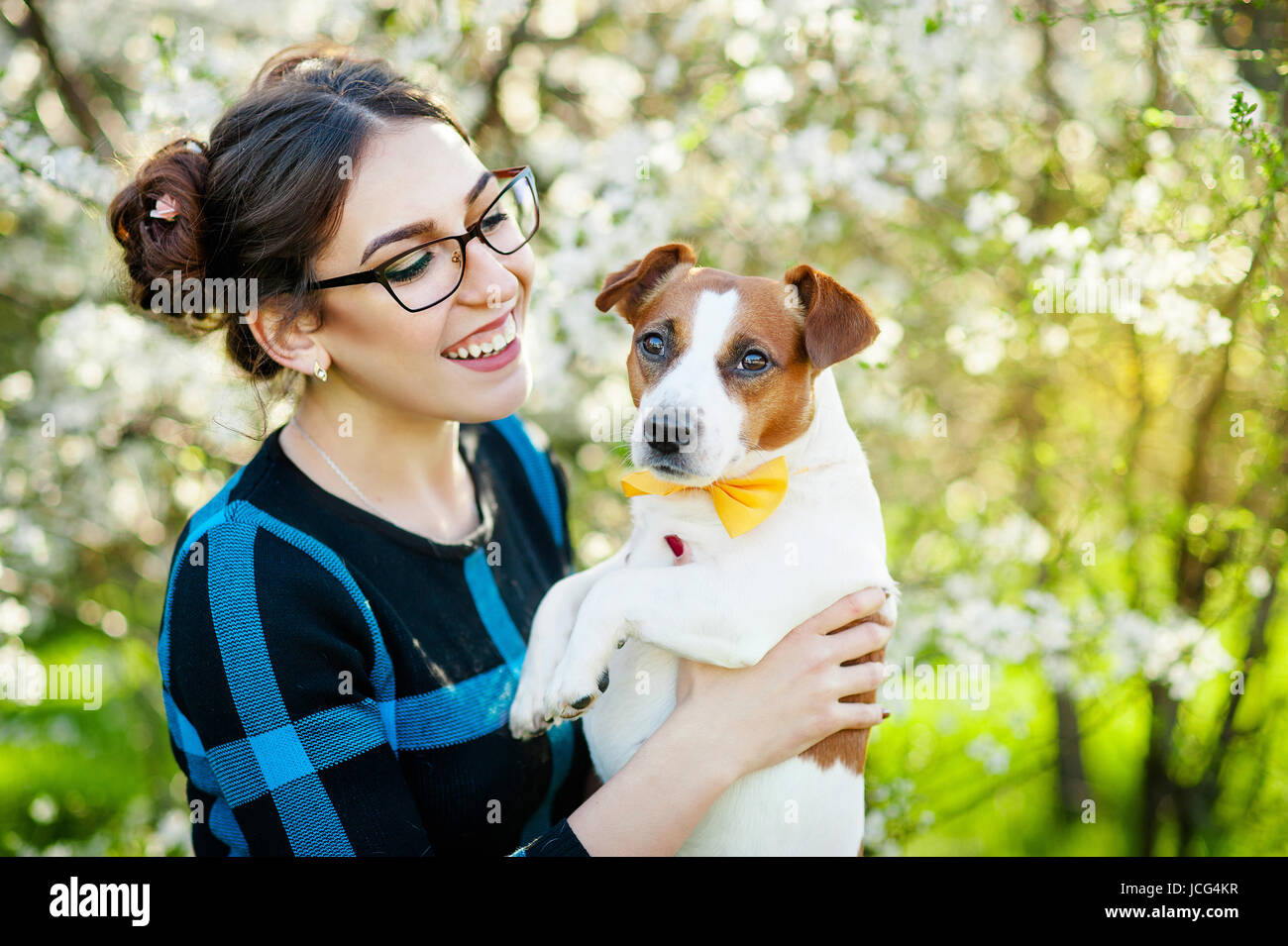Happy young woman hugging and having fun with her Jack Russell Terrier In the blooming garden - Stock Image