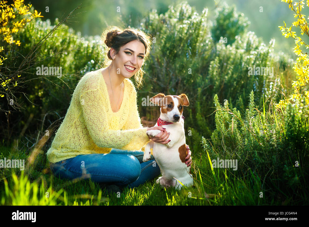 Girl walking with a hunting dog - the Jack Russell Terrier . Close-up. Spring. Copy space. - Stock Image