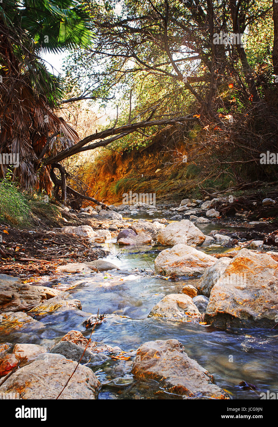 rocky winding stream in forest with rusty orange on rocks - Stock Image