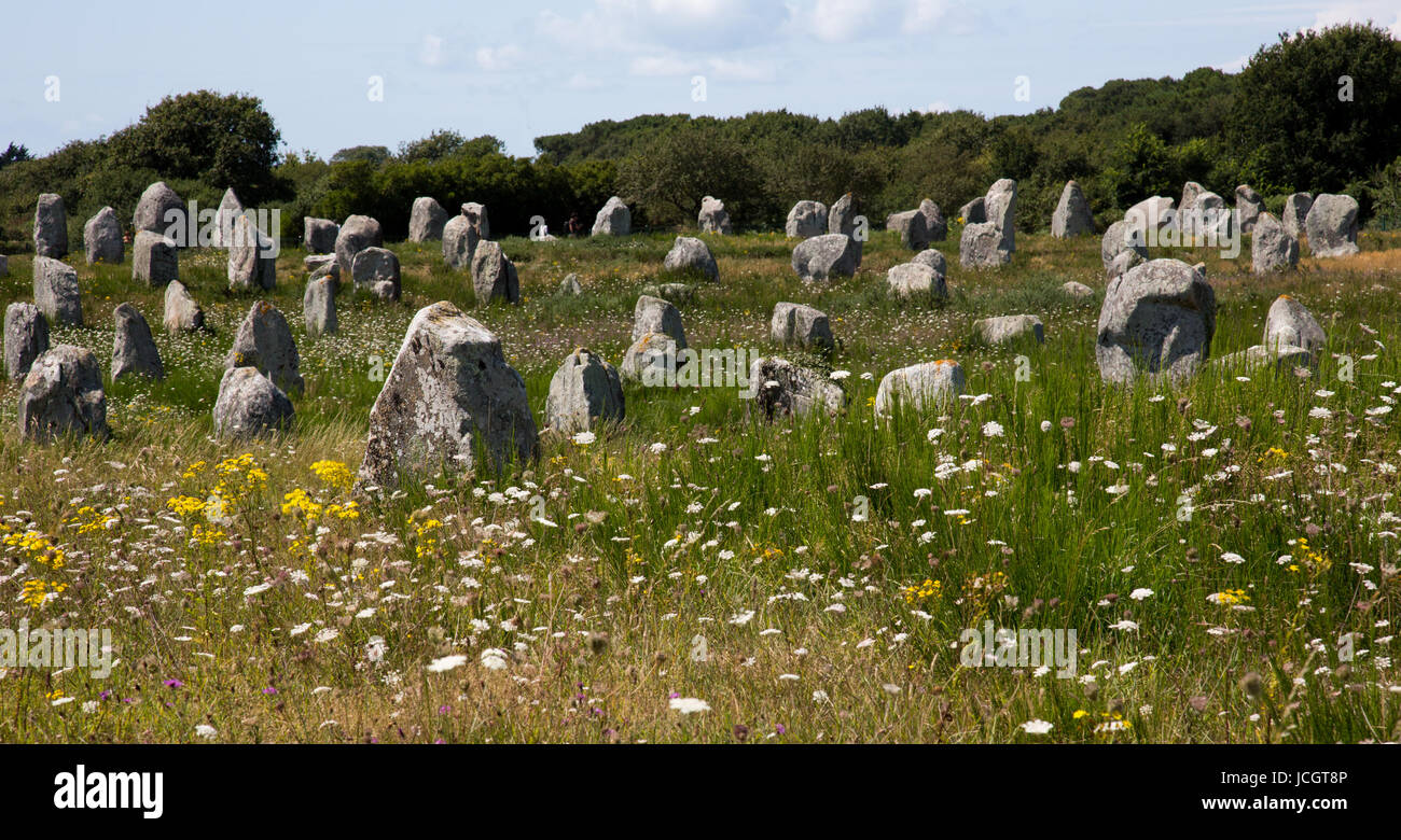 The avenues, stone circles and burial barrows at the neolithic site in Carnac, France - Stock Image