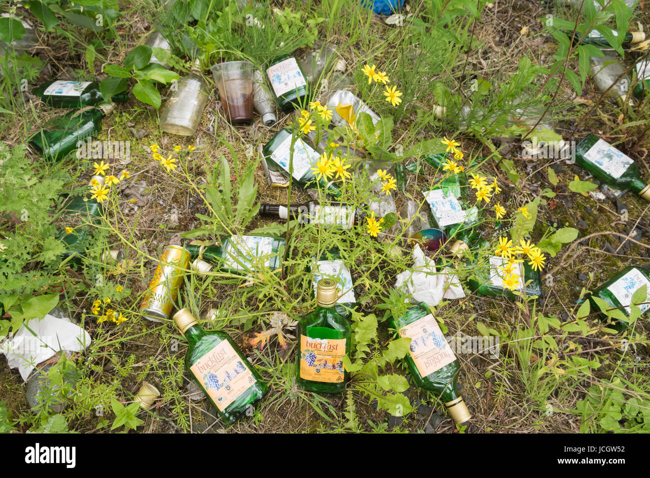 Buckfast Tonic Wine - empty bottles littering in Glasgow, Scotland, UK - Stock Image
