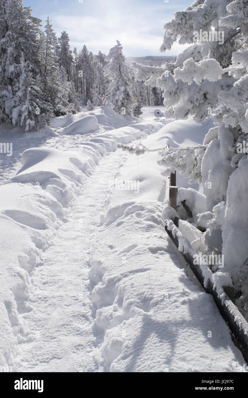 snowy trail - Stock Image