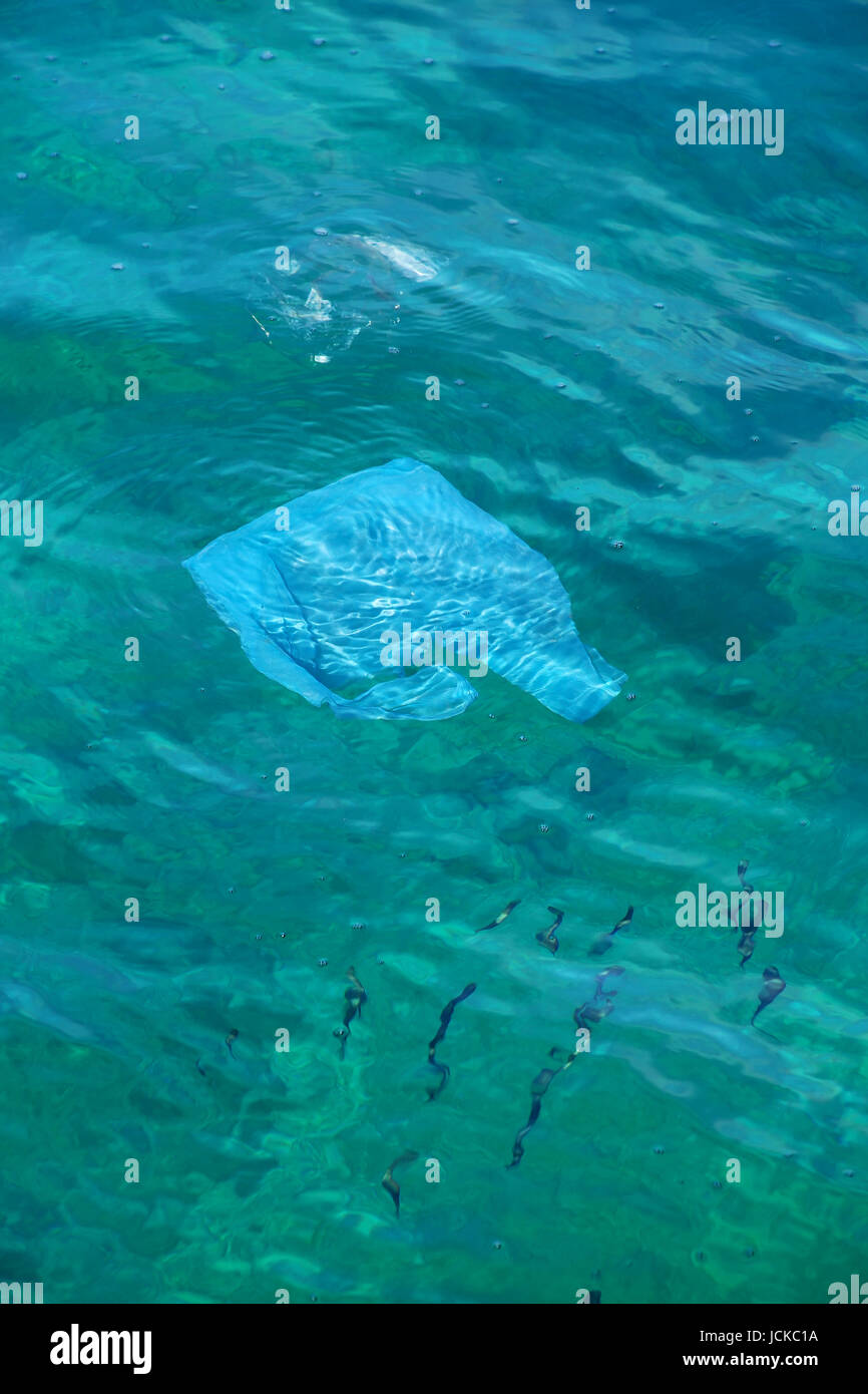 Plastic bag floating in clear water - sea pollution - Stock Image