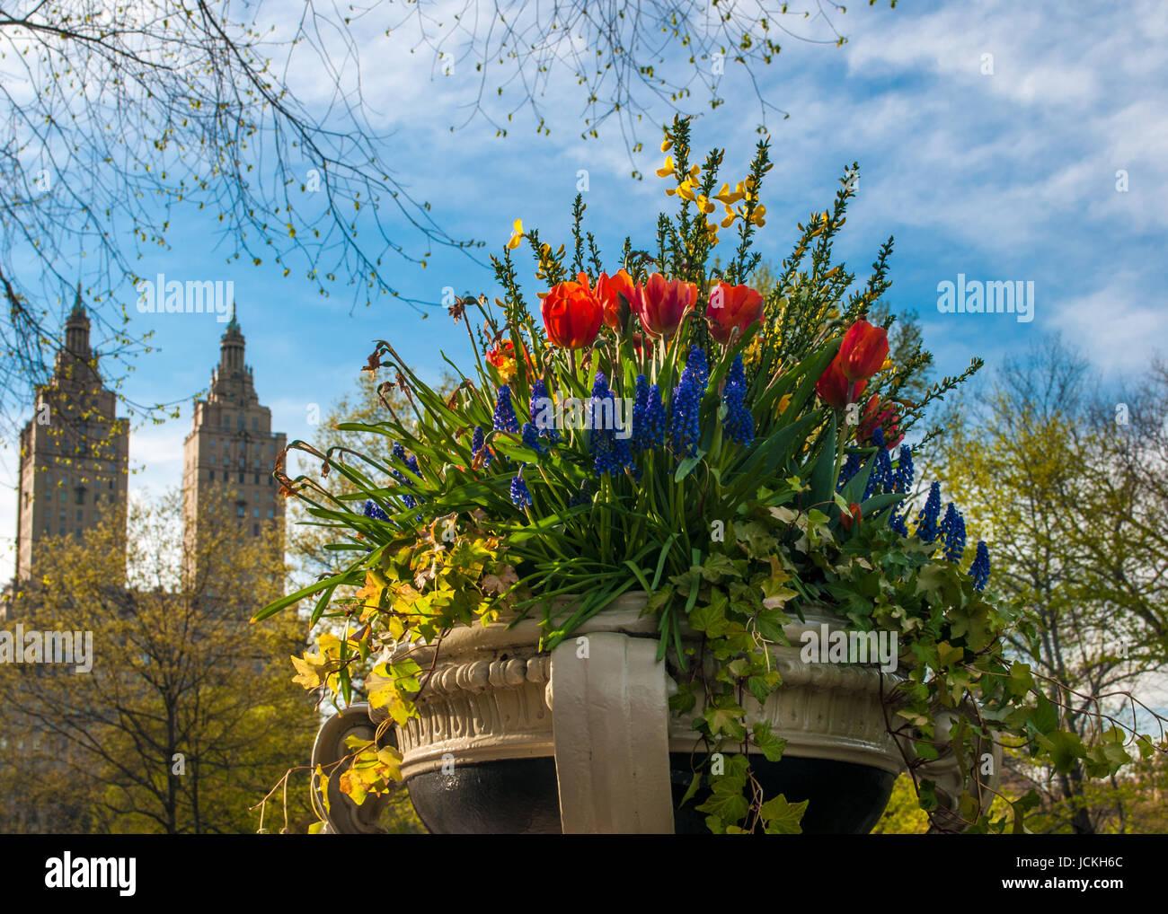 Mazzi Di Fiori Sanremo 2016.San Remo Flowers Stock Photos San Remo Flowers Stock Images Alamy