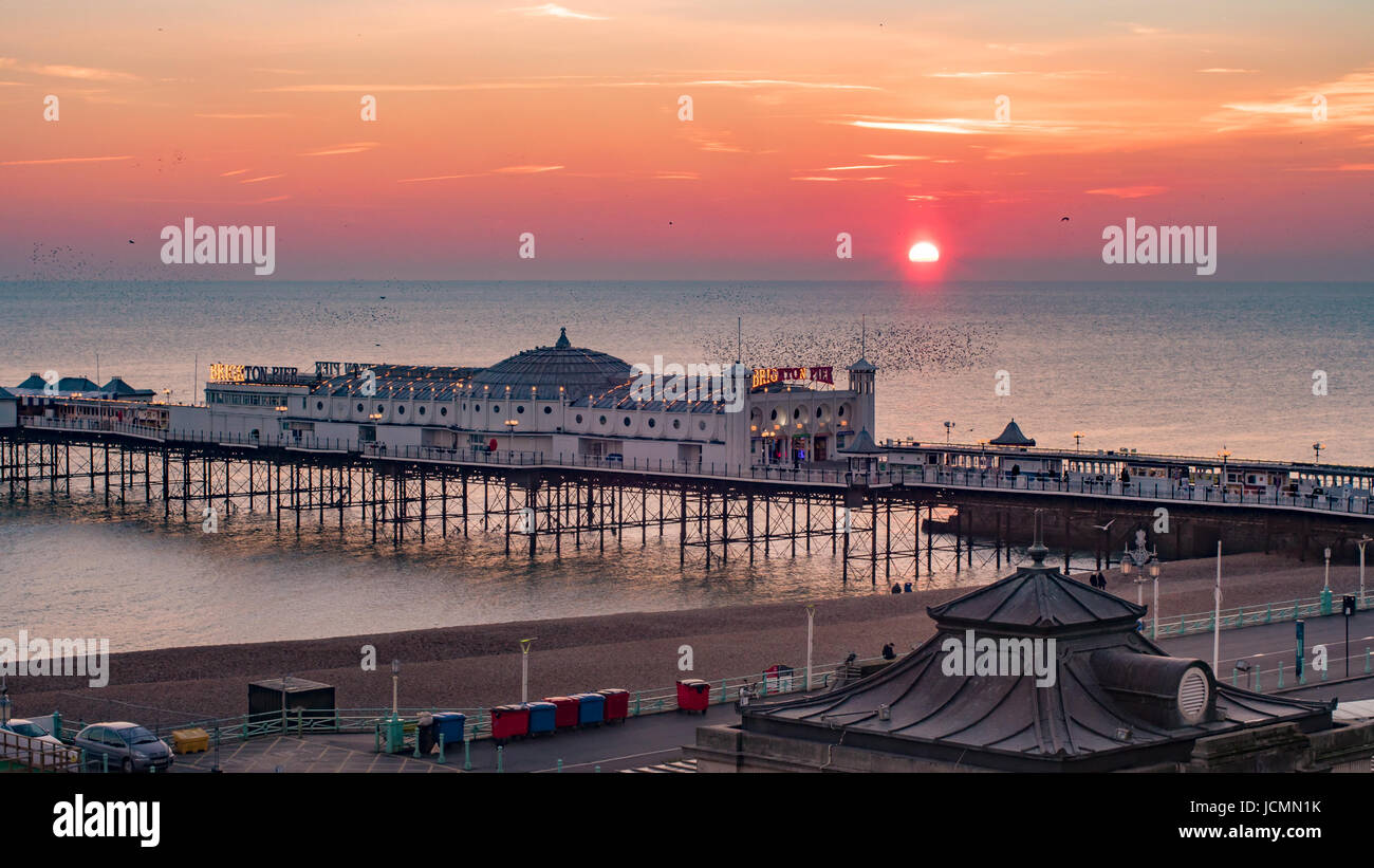 View of a sunset on  Brighton pier with a flock of birds - Stock Image