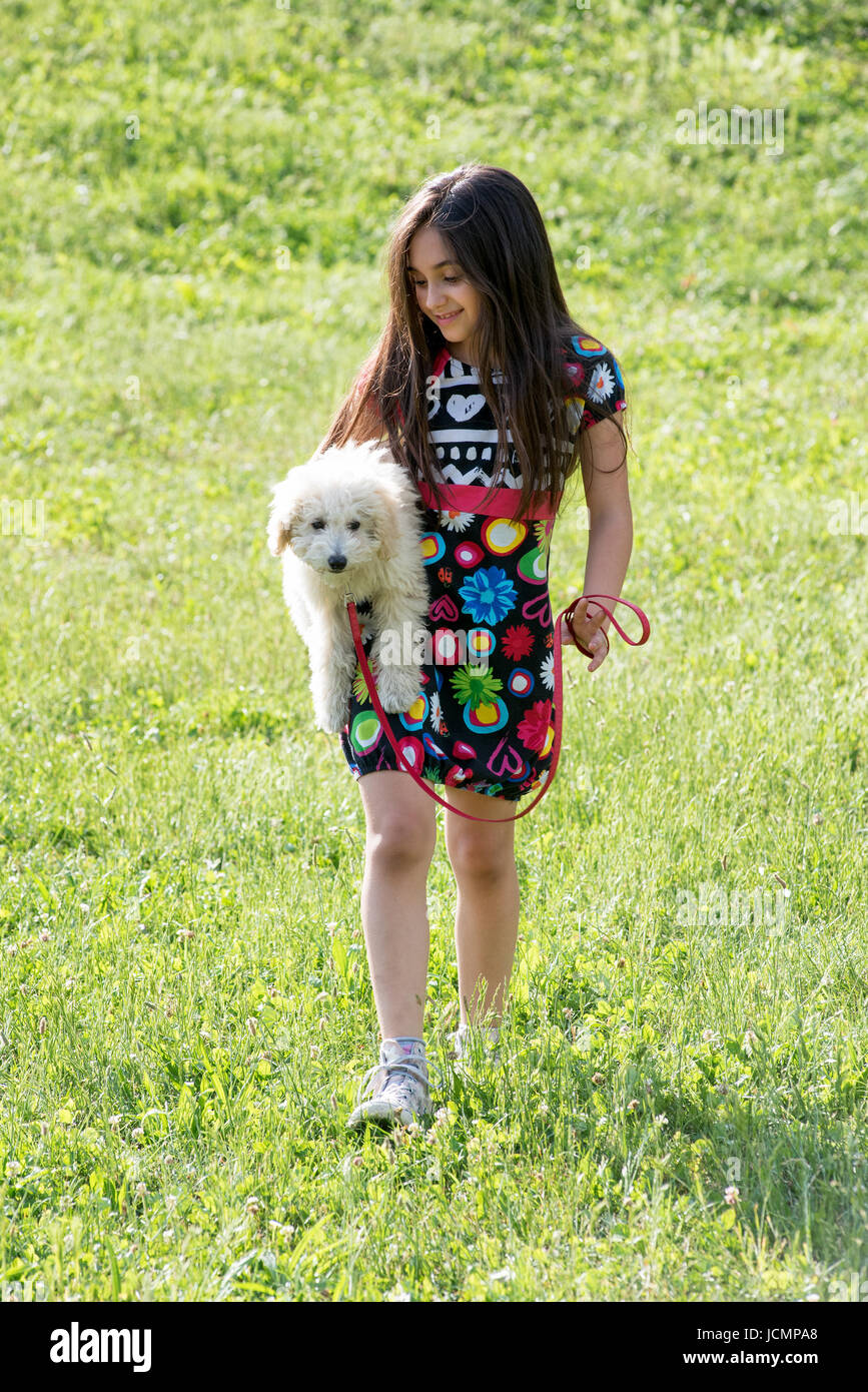 Pretty young girl carrying her little pet poodle under her arm as she walks across a grassy field in the sunshine - Stock Image