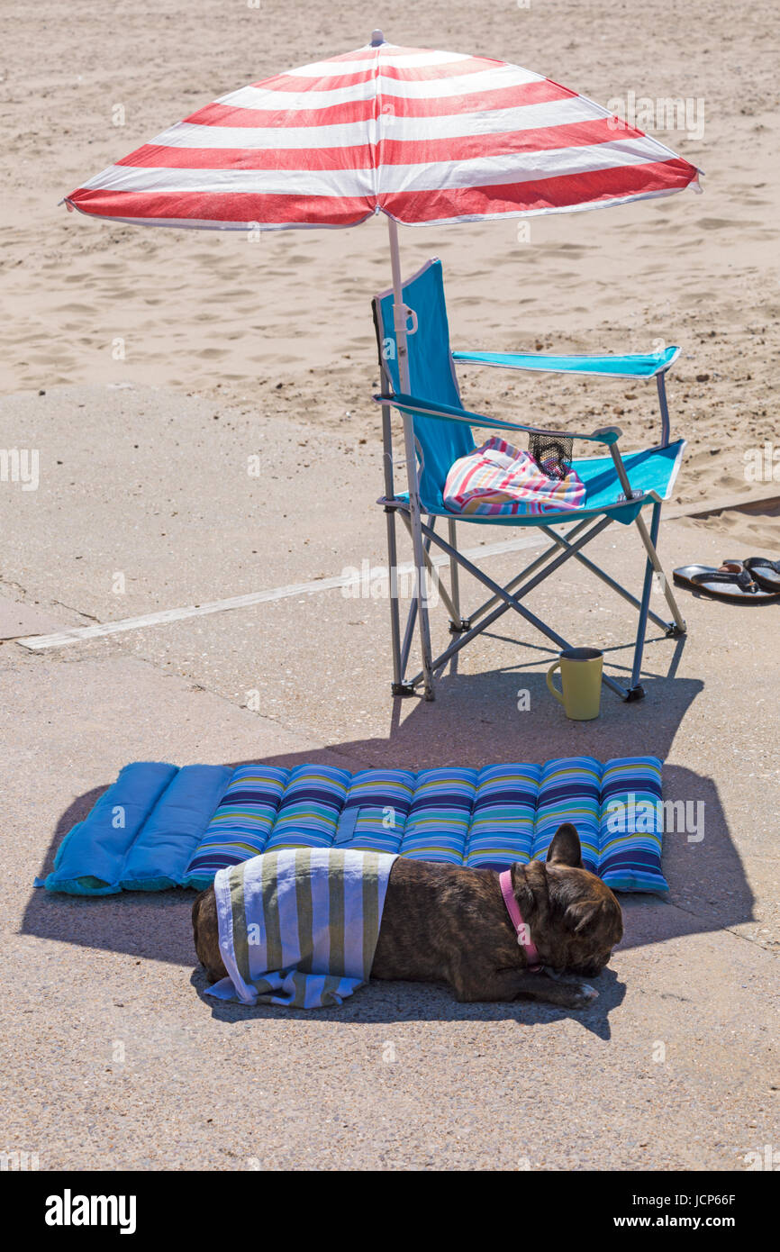 Bournemouth, Dorset, UK. 17th June, 2017. UK weather: hot sunny day with unbroken sunshine. Visitors head to the - Stock Image