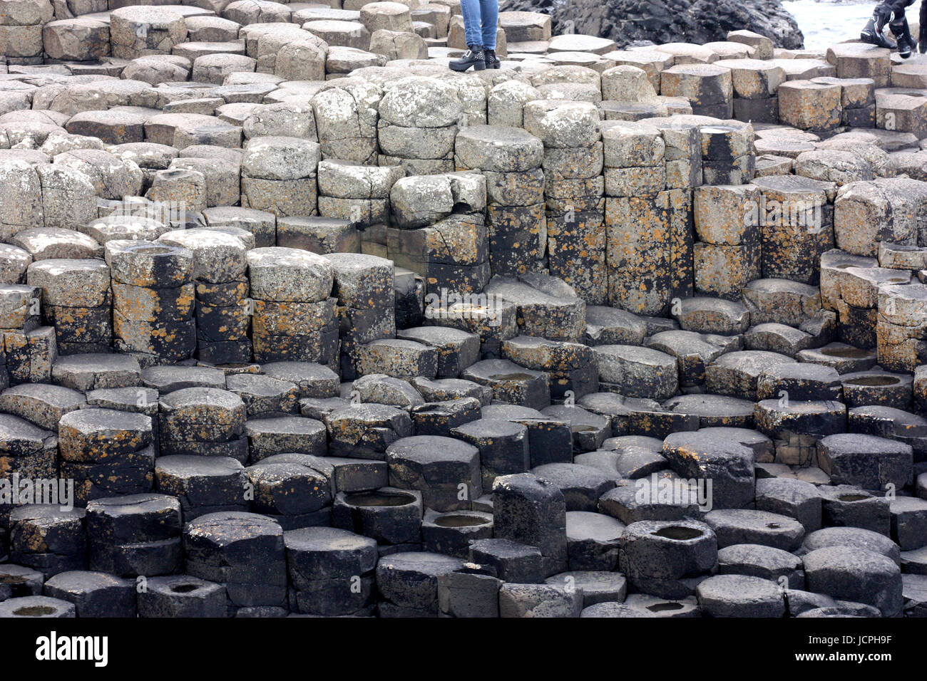 On the Giant's Causeway, Northern Ireland - Stock Image