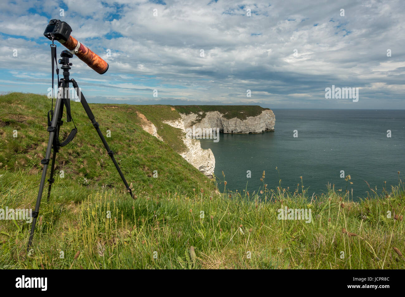 canon 7D mark iii set up on tripod for photographing seabirds with 400mm lens attached & camouflage sleeve, - Stock Image