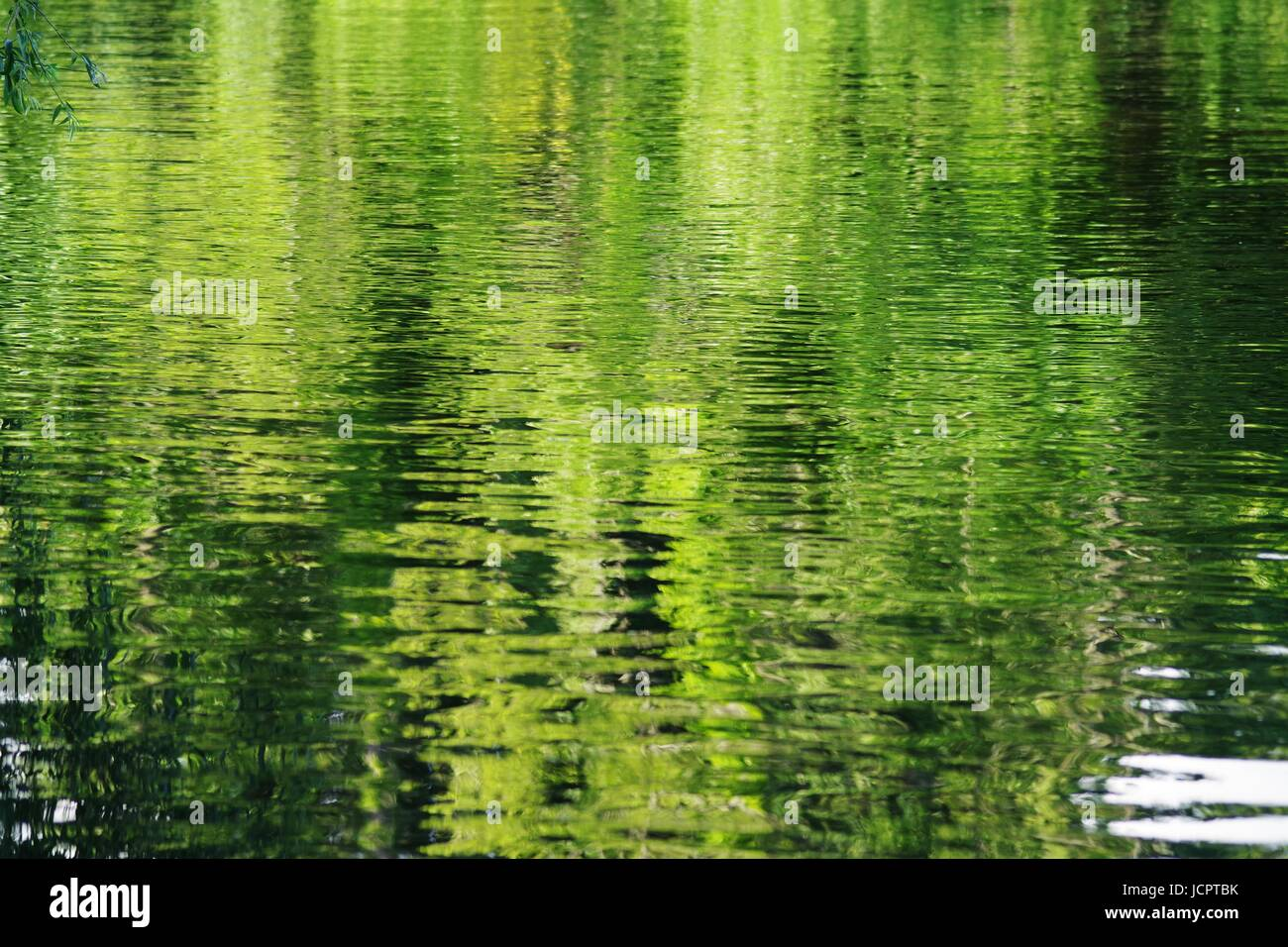 Reflection of Summer Foliage on the Rippled Water of the River Exe. Devon, UK. June, 2017. - Stock Image