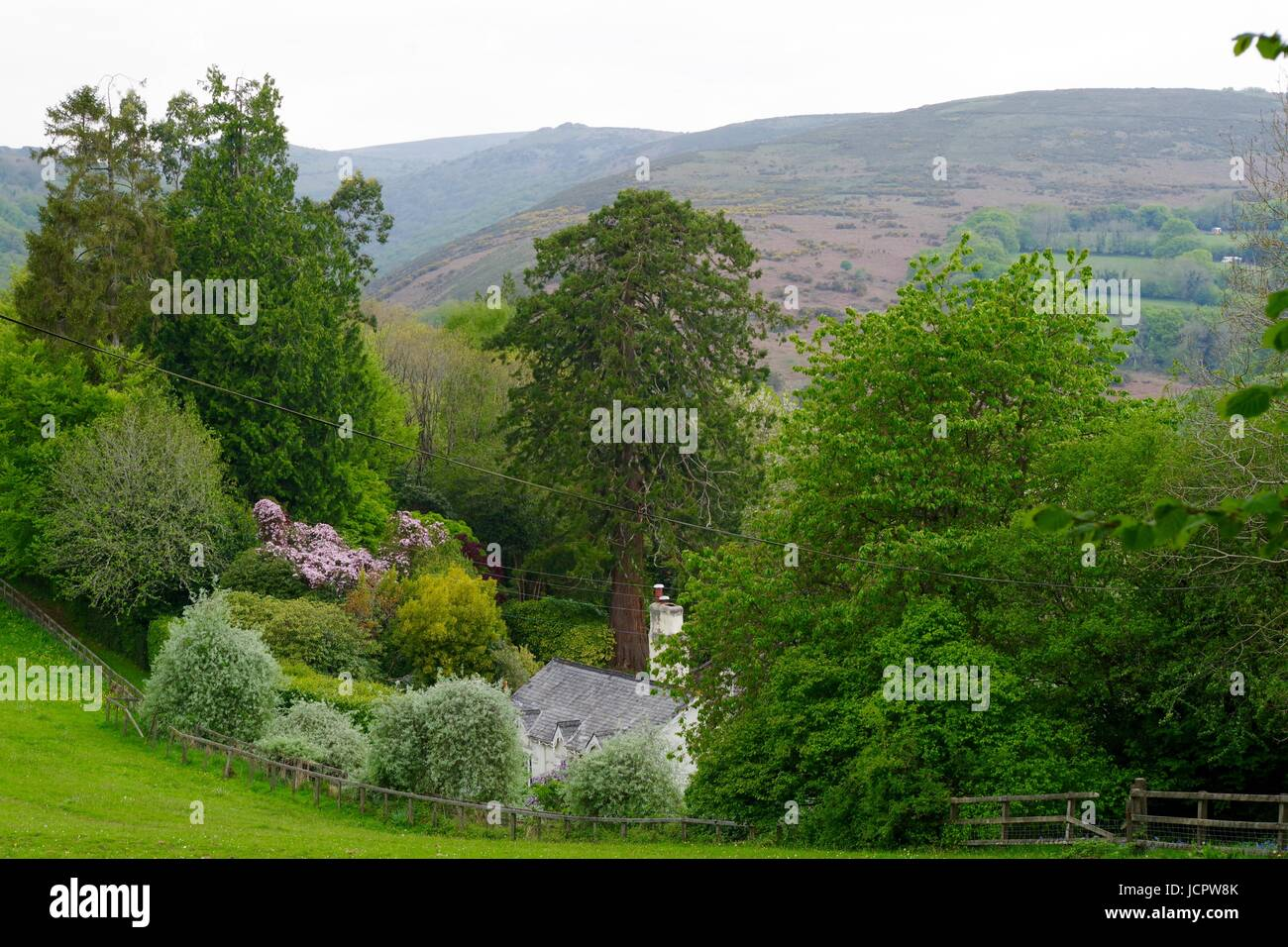 Holne Cottage and Garden, Overlooking the River Dart Valley, Near Holne Wood. Dartmoor, Devon, UK. May, 2017. - Stock Image