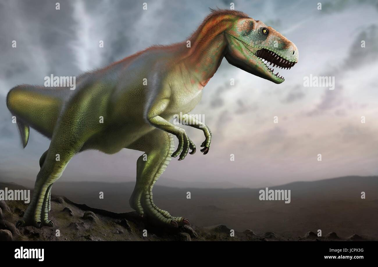 Megalosaurus is genus extinct meat-eating dinosaurs,theropods,from Middle Jurassic period in Earth's history,166 - Stock Image