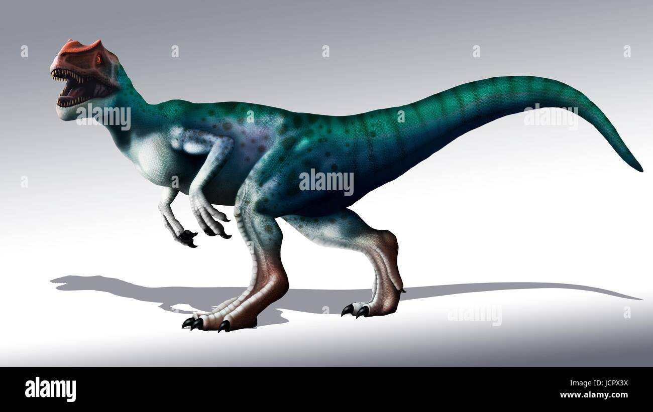 Allosaurus dinosaur, artwork. Allosaurs were large carnivorous theropods that lived during the late Jurassic period - Stock Image