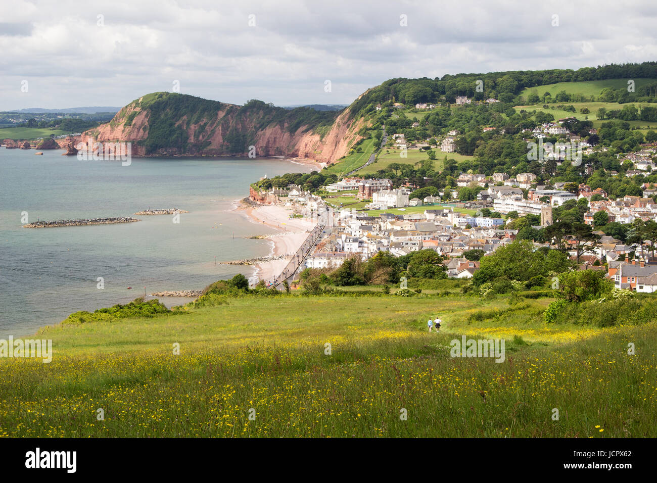 View of Sidmouth in Devon from cliffs with wildflower meadow in foreground - Stock Image