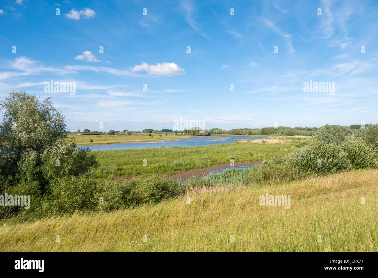Panorama of nature reserve Breemwaard in flood plains of river Waal from dike on south bank near Nieuwaal, Bommelerwaard, Stock Photo