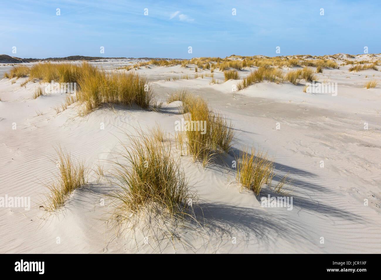 North Sea island, Norderney, East Frisia, Germany, Beach, Stock Photo
