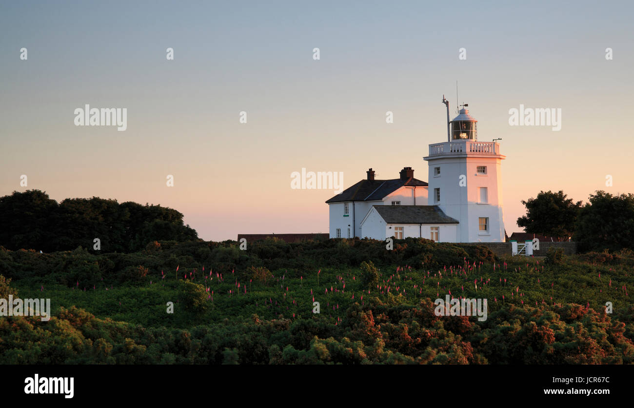 Cromer Lighthouse,  Cromer, Norfolk, England, Europe - Stock Image